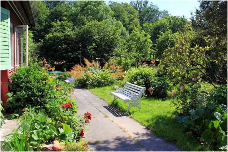 Сад в музее Брахерта
