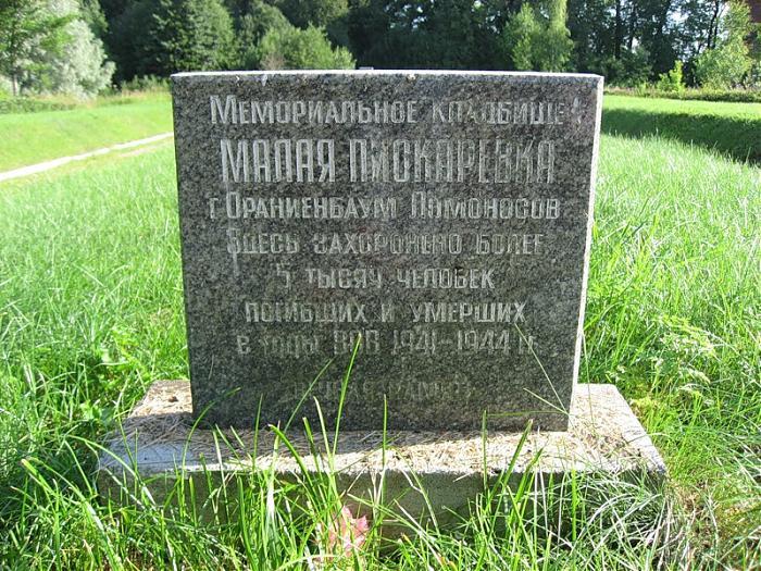 Малая Пискаревка Ломоносов
