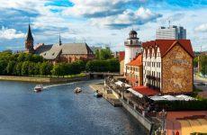 Достопримечательности Калининграда: что посмотреть в бывшем Кенигсберге