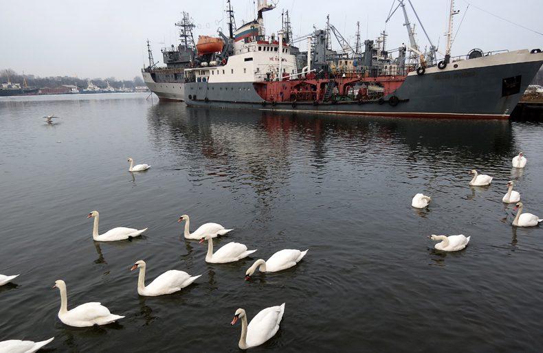 Военные корабли, Балтийск