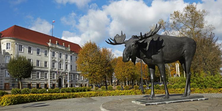 Памятник Лосю, Советск