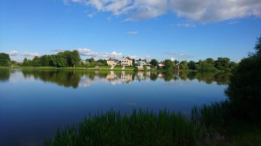 Орловский пруд Стрельна