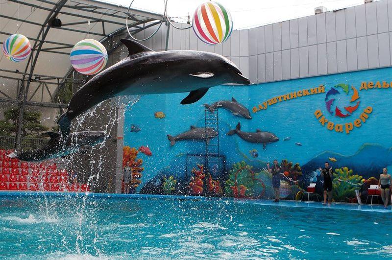 Дельфинарий Алушта