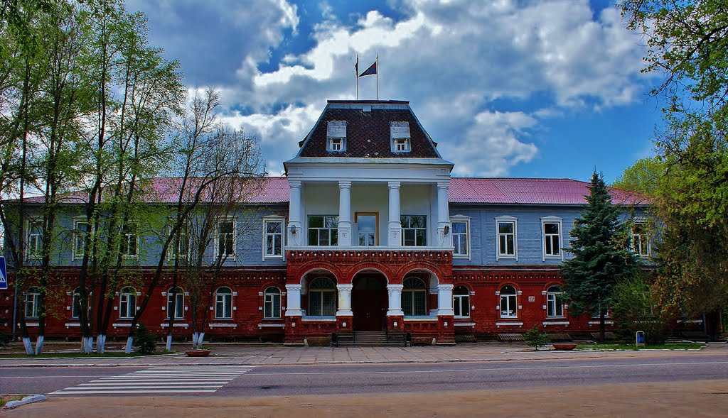 Богадельня, Гусь-Хрустальный
