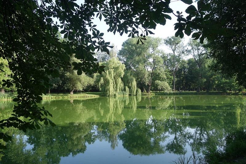 Южный парк Калининград