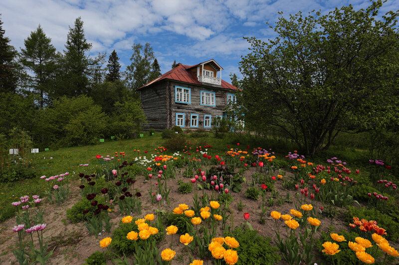 Ботанический сад Соловки