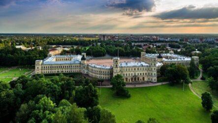 Гатчинский дворец возобновил работу 7 июля