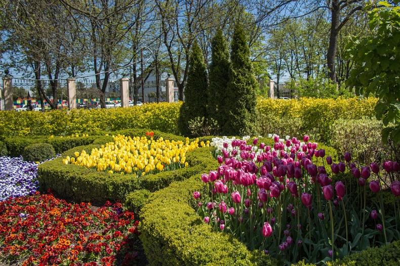 Ботанический сад Косенко Краснодар