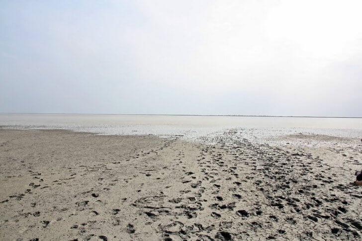 Ханское озеро пересохшее