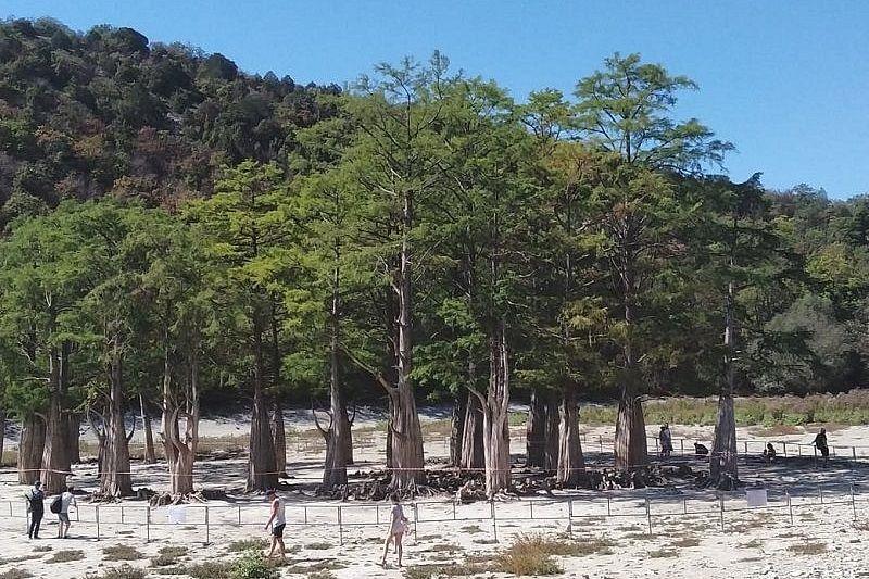 Кипарисовое озеро в Анапе высохло