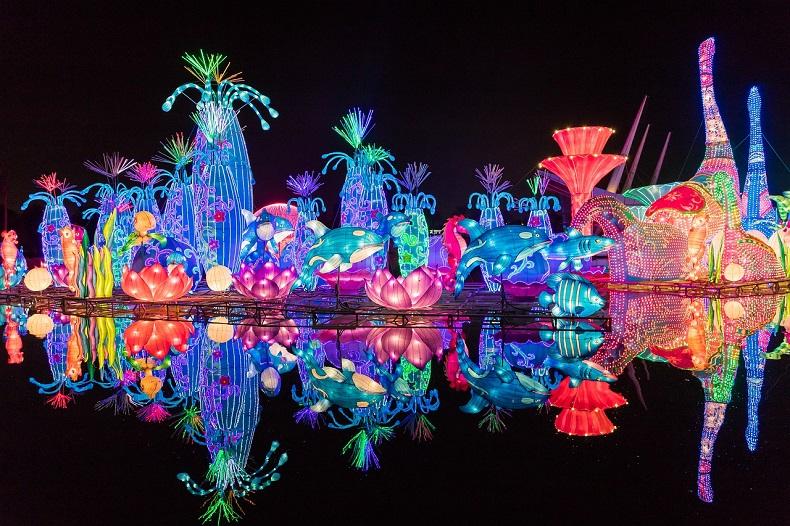 Светящийся сад Дубай