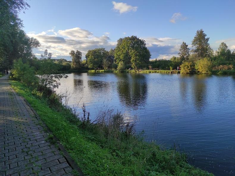 Большой пруд в парке Чехова